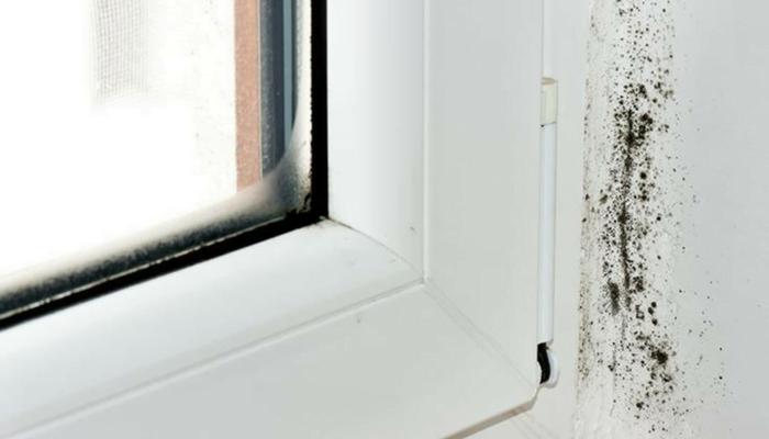 Cómo quitar las manchas de las paredes