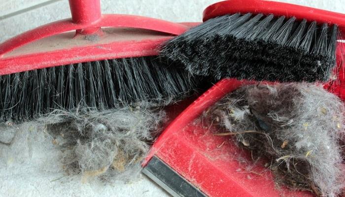 16 mantenimientos del hogar que se repetirá regularmente