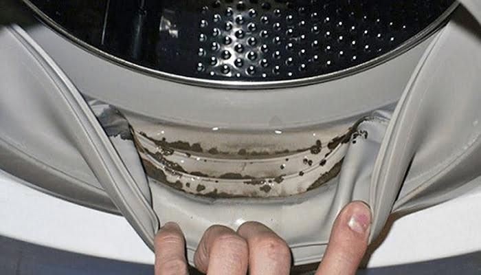 Lavadora: los trucos para mantenerla siempre limpia y eficiente