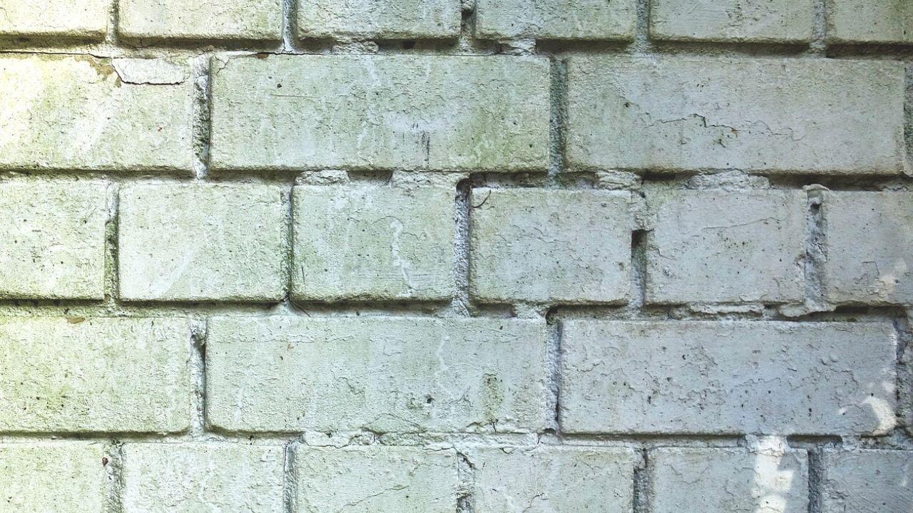 Cómo eliminar la salitre de las paredes
