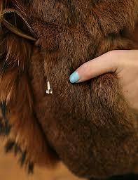 Limpieza de abrigos de piel de conejo